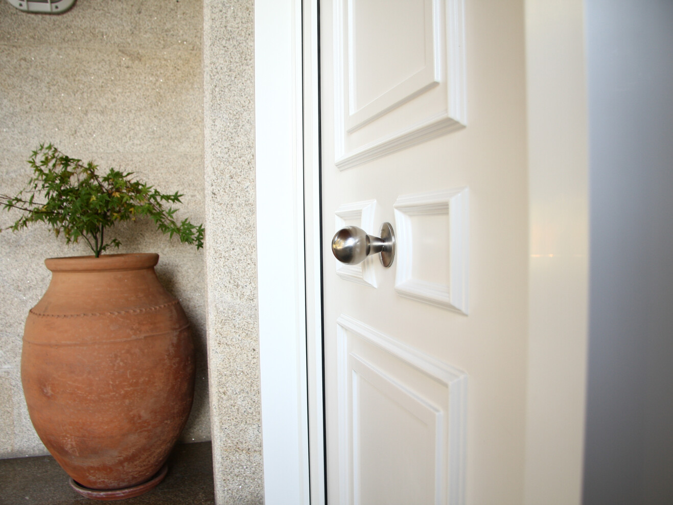 Pomo en puerta entrada